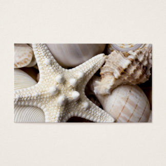 Sea Shell Starfish Background - Beach Shells Business Card