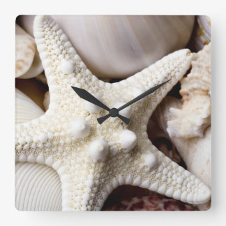 Sea Shell Starfish Background - Beach Shells Square Wall Clock