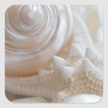 Sea Shell & Starfish Background - Beach Shells Square Stickers