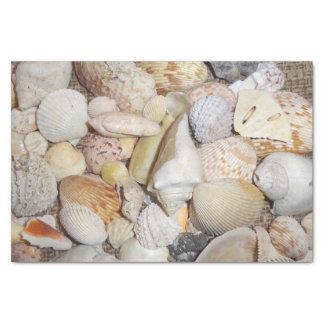 Sea Shell Tissue Paper
