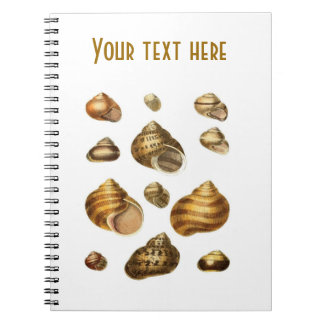 Sea shells and maritime theme, brown ocean shell notebook