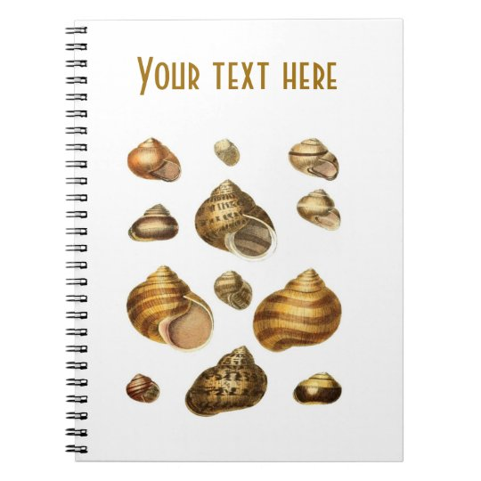 Sea shells and maritime theme, brown ocean shell spiral notebook