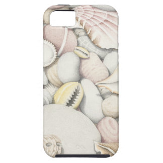 Sea Shells and Pebbles in Coloured Pencil Case For The iPhone 5