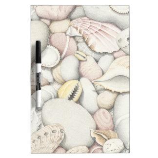 Sea Shells and Pebbles in Coloured Pencil Dry Erase Board