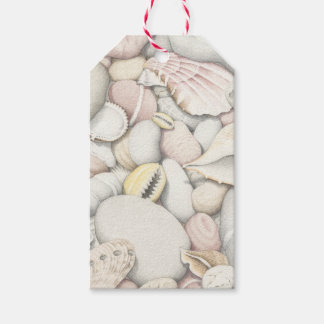 Sea Shells and Pebbles in Coloured Pencil Gift Tags