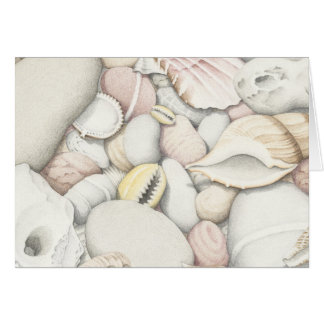 Sea Shells and Pebbles in Coloured Pencil Greeting Card