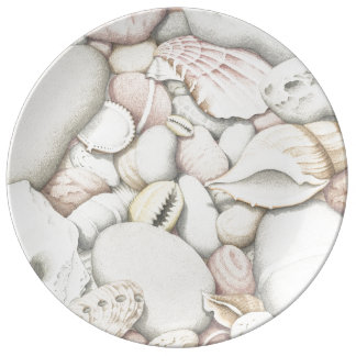 Sea Shells and Pebbles in Coloured Pencil Plate
