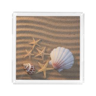 Sea Shells And Starfish Acrylic Tray