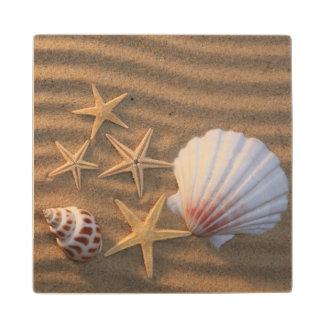 Sea Shells And Starfish Maple Wood Coaster