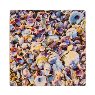 Sea Shells By The Sea Shore Maple Wood Coaster