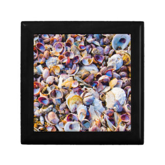 Sea Shells By The Sea Shore Small Square Gift Box
