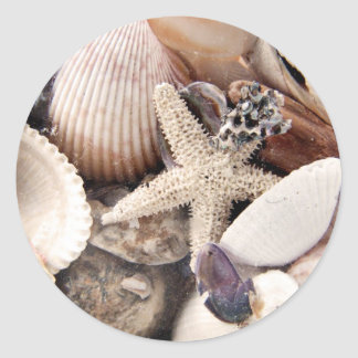 Sea Shells by the Shore Classic Round Sticker