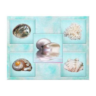Sea Shells Canvas Print - 5 Different Images -Aqua