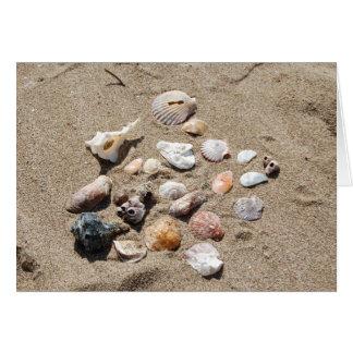 Sea shells. card