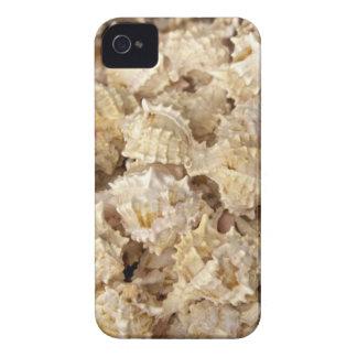 Sea Shells iPhone 4/4S Case-Mate Case iPhone 4 Case-Mate Cases