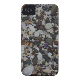 Sea Shells iPhone 4 Barely There Case iPhone 4 Case-Mate Cases