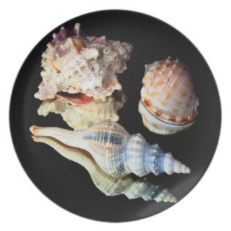 Sea Shells on a Mirror Dinner Plate