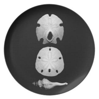 Sea Shells on Black Plates
