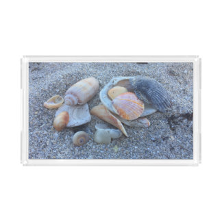 Sea Shells Paradise Beach