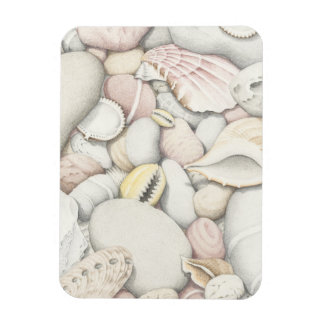 Sea Shells & Pebbles in Pencil Photo Magnet