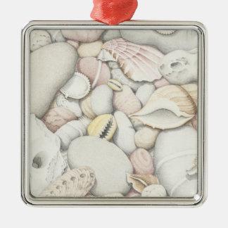 Sea Shells & Pebbles in Pencil Square Ornament
