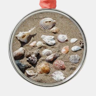 Sea shells. Silver-Colored round decoration