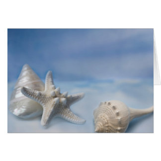 Sea Shells Star Fish Hand Painted Blue Watercolor Card