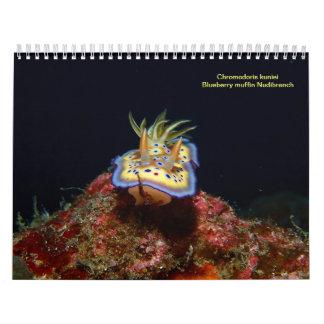 Sea Slugs 2015 Calendar