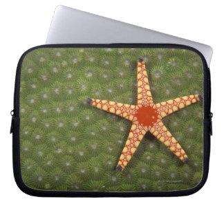 Sea star cleaning reefs by eating algae laptop sleeve