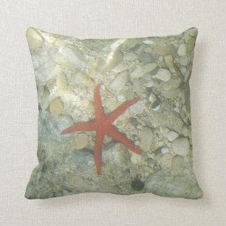 sea star cushion