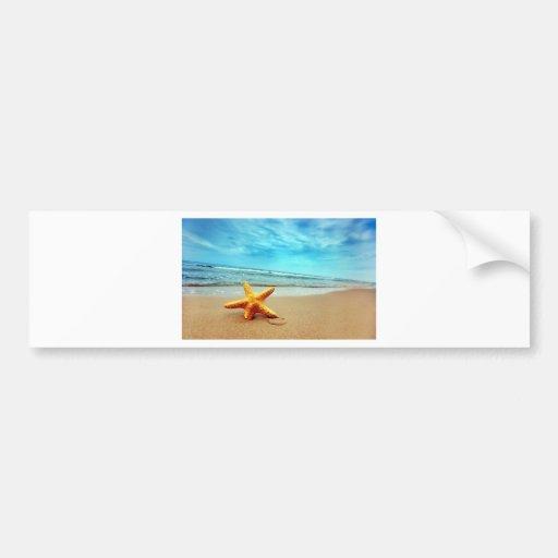 Sea Star On The Beach, Blue Sky, Ocean Bumper Stickers