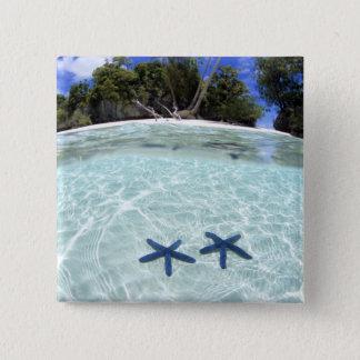 Sea stars, Rock Islands, Palau 2 15 Cm Square Badge