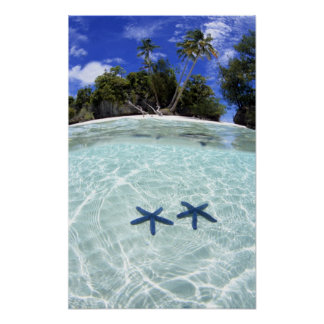 Sea stars, Rock Islands, Palau 2 Poster