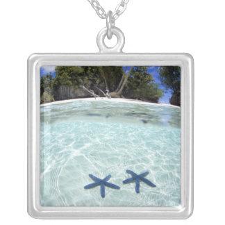 Sea stars, Rock Islands, Palau 2 Silver Plated Necklace