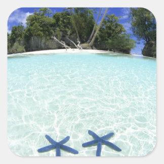 Sea stars, Rock Islands, Palau Square Sticker