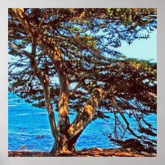 Sea Thru Tree photo painting Poster