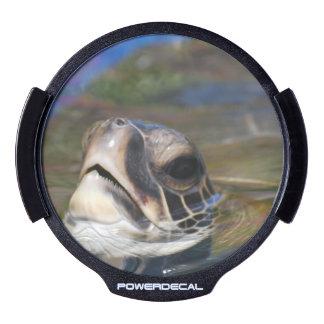 sea-turtle-17.jpg LED car decal