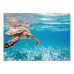 "Sea turtle 5"" x 7"" invitation card"