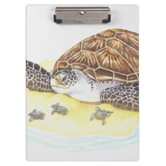 Sea Turtle and Babies Clipboard