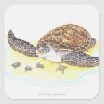 Sea Turtle and Babies Square Stickers