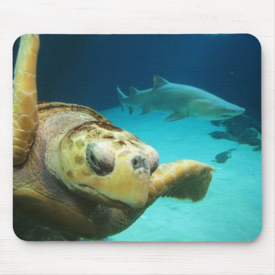 Sea Turtle and Shark Mousepad