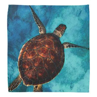 Sea Turtle Beauty Bandana
