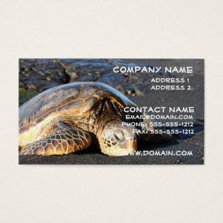 Sea Turtle Business Card