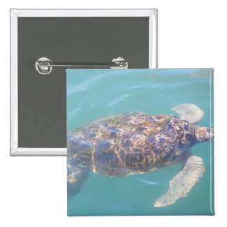 Sea Turtle Button