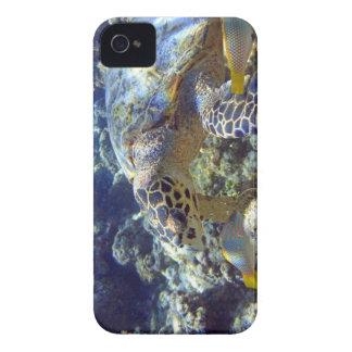 SEA TURTLE iPhone 4 COVERS
