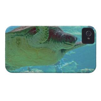 Sea Turtle iPhone 4 Cover
