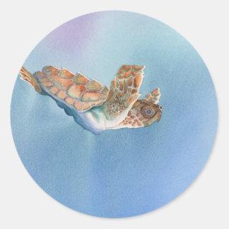 sea turtle classic round sticker