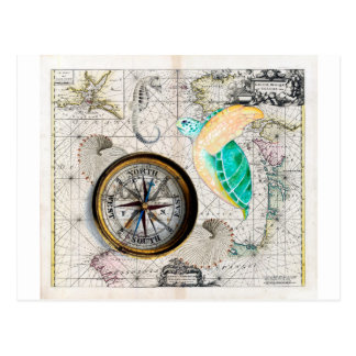 Sea Turtle Compass Vintage Postcard