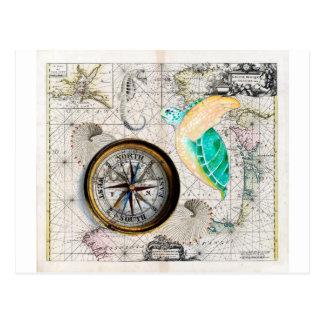 Sea Turtle Compass Vintage Postcard