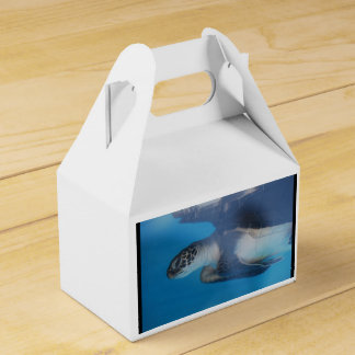 Sea Turtle Favour Box